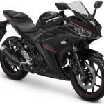 YAMAHA NEW R25